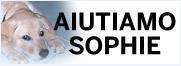 Aiutiamo Sophie - Raccolta fondi