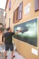 Alberto Zamboni - Clicca per ingrandire